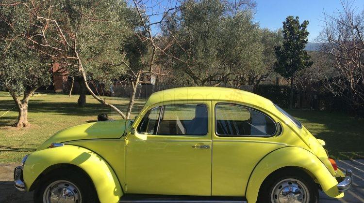 "1972 VW 1302 ""20 Million"" Jubilee Special Edition"